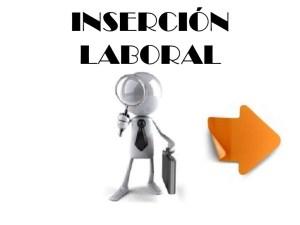 insercin-laboral-1-728