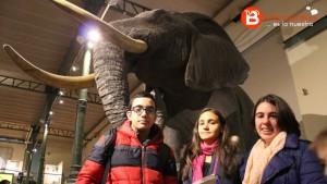 Tres alumnos delante del elefante africano