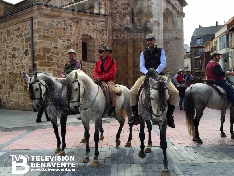 dia del caballo 2015 Benavente 11