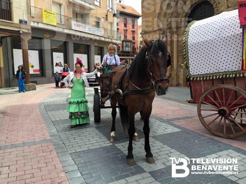 dia del caballo 2015 Benavente 17