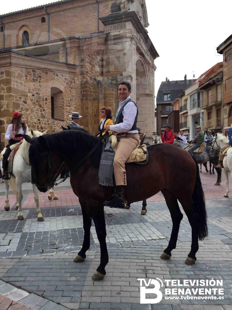 dia del caballo 2015 Benavente 19