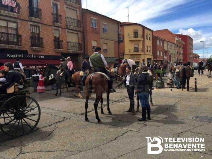 dia del caballo 2015 Benavente 25