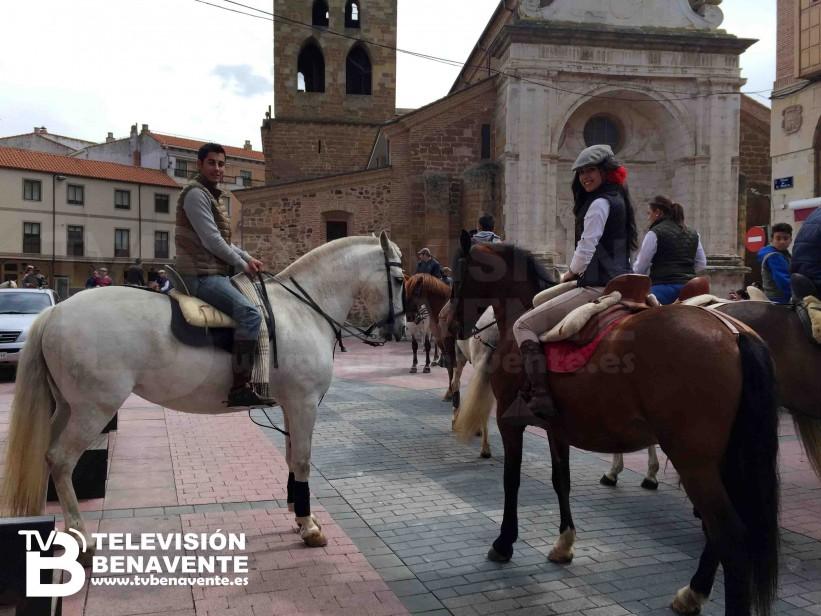 dia del caballo 2015 Benavente 3
