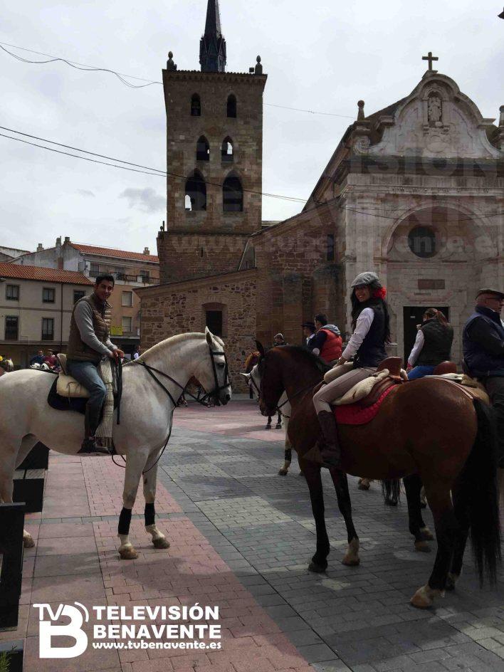 dia del caballo 2015 Benavente 4