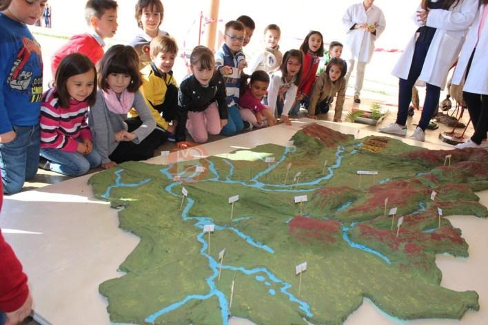 Alumnos de 1º Primaria viendo la maqueta de la comarca de Benavente y los Valles