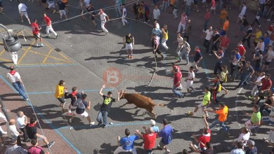 Photo of El torito del Alba no ha podido finalizar el recorrido a causa de la rotura de su cuarto trasero derecho