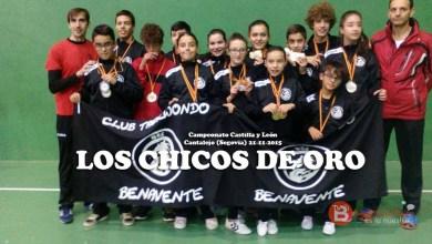 Photo of 13 oros, 8 platas y 6 bronces para el Taekwondo Benavente, esta vez en Cantalejo