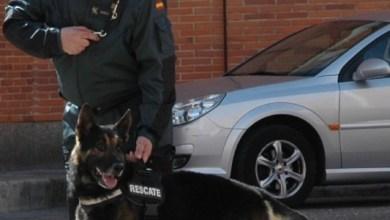 Photo of La Guardia Civil localiza a una persona que llevaba tres días desaparecida