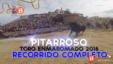 Photo of VIDEO: Recorrido COMPLETO de Pitarroso Toro Enmaromado 2016 de Benavente