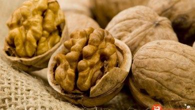 Photo of Un estudio revela que las nueces reducen el riesgo de cáncer de colon