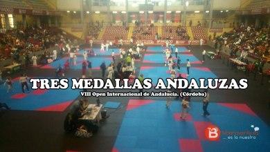 Photo of Más medallas para los taekwondistas benaventanos