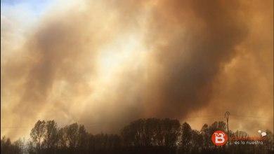 Photo of GALERÍA: Gran incendio en un campo de Carracedo de Vidriales