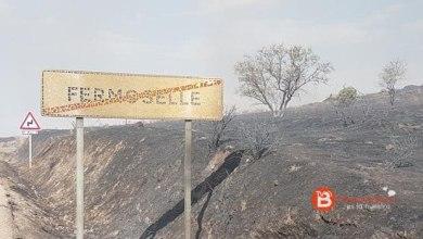 Photo of La Junta ya cuenta con un plan para recuperar el entorno de Fermoselle