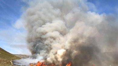 Photo of Gran cantidad de efectivos trabajan en el incendio de nivel 1 en Lubián