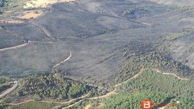 Photo of Rebajado a nivel 0 el incendio de San Martín del Pedroso