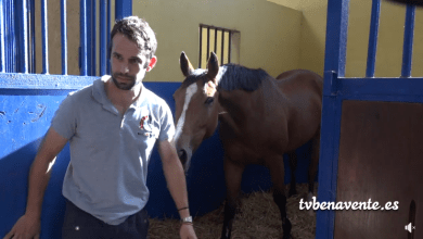 Photo of César Mañanes consigue el Oro en el Campeonato de Castilla y León