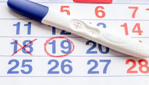 tv catia fonseca Dificuldade para engravidar? Conheça o tratamento floral calendário