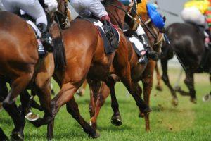 Os melhores lugares no mundo para uma experiência emocionante de corrida de cavalos
