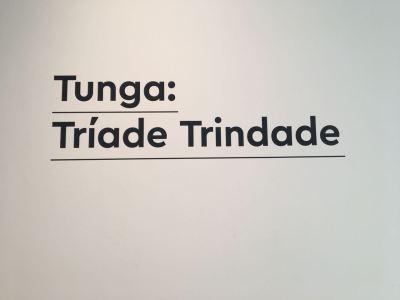Exposição Tunga: Tríade Trindade