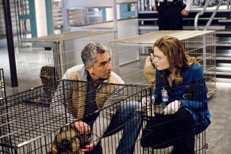 Cesar Millan and Emily Deschanel