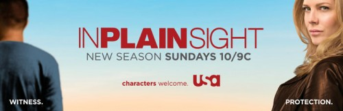In Plain Sight Season 2 Poster