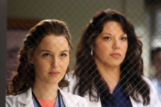 Grey's Anatomy Season 9 Episode 11 The End is the Beginning is the End (12)