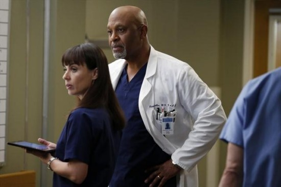 Grey's Anatomy Season 9 Episode 12 Walking on a Dream (3)