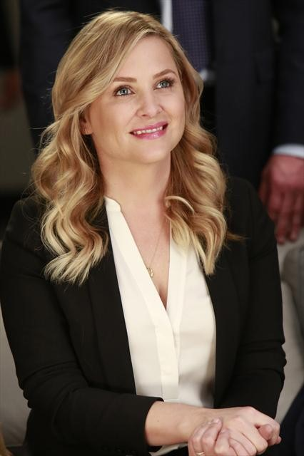 Grey's Anatomy Season 9 Episode 16 This Is Why We Fight (2)