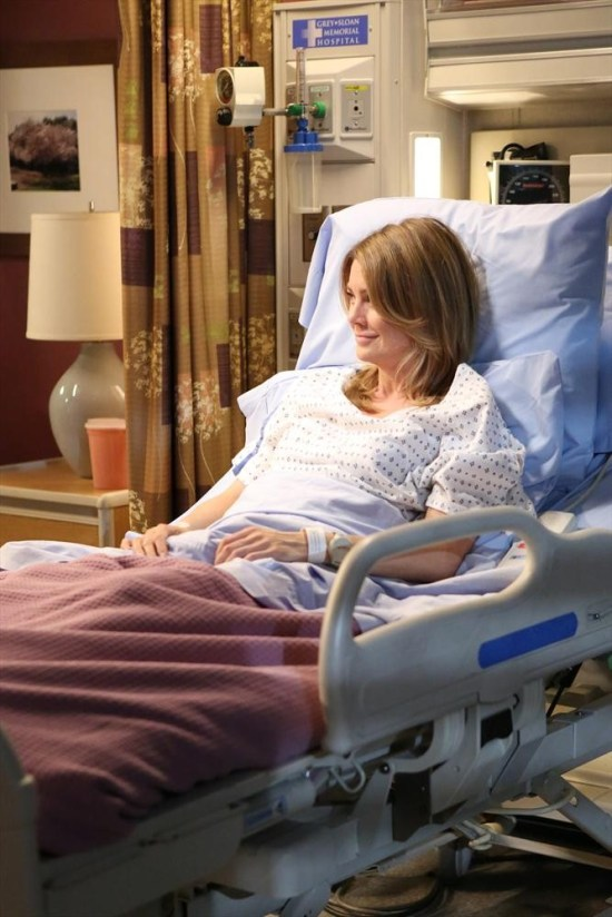 Grey's Anatomy Season 10 Episode 1 & 2 Seal Our Fate;I Want You With Me (6)