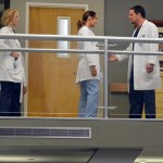 Grey's Anatomy Season 10 Episode 14 You've Got To Hide Your Love Away (9)