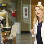 Grey's Anatomy Season 10 Episode 16 We Gotta Get Out Of This Place (8)