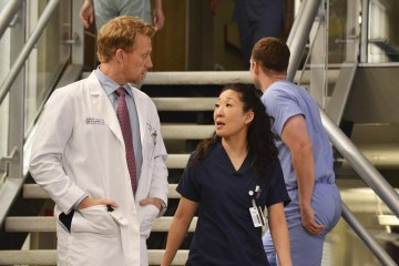 Grey's Anatomy Season 10 Episode 22 We Are Never Getting Back Together (3)
