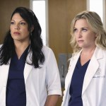 Grey's Anatomy Season 11 Episode 1 I Must Have Lost It On The Wind (5)