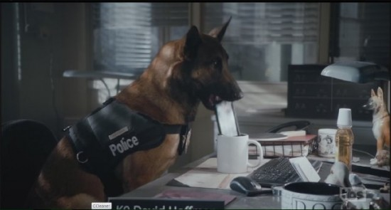 Officer Hoffman - Angie Tribeca