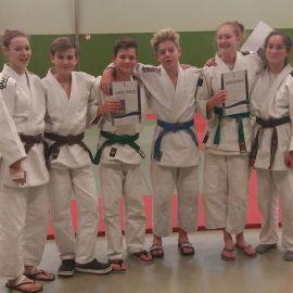 Judo: Neue Gürtelfarben kurz vor Weihnachten