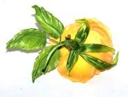 16. Роза желтая 1800 руб.