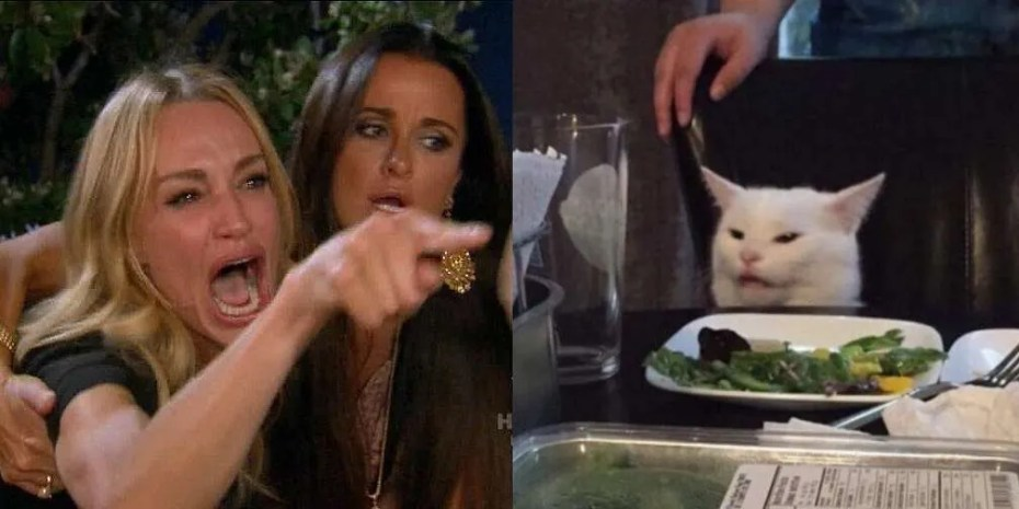 Woman Yelling at a Cat