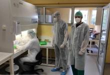 Photo of Na Veterinarskom fakultetu u Sarajevu izoliran bh. soj virusa SARS-CoV-2