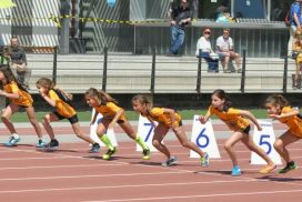 Atletisme - Club Muntanyenc Sant Cugat