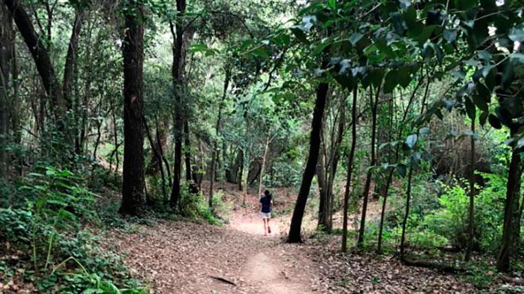 El Bosc de Volpelleres obre de nou després de pavimentar els camins