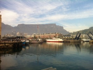 Pelagic Australis at the East Pier in front of Table Mountain