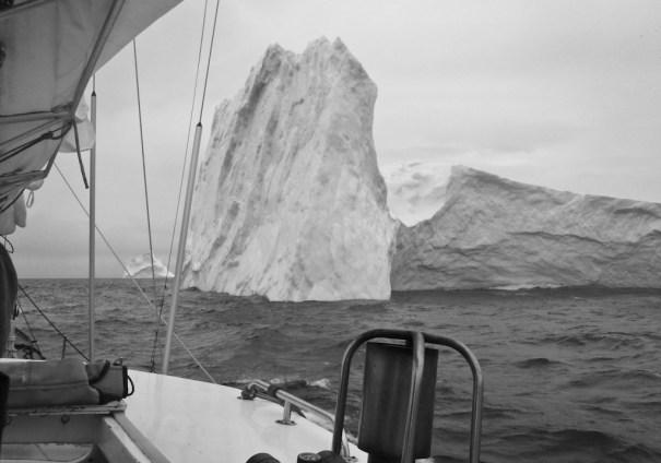 Iceberg from Pelagic by .