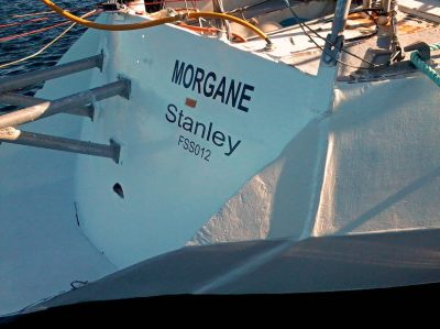 "Name ""Morgane"""