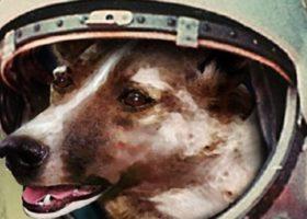 Firenze: decisione singolare del comune, aree per cani intitolate a eroi a quattro zampe