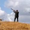Toscana, caccia: il 1 e 2 settembre la preapertura. Lo ha stabilito la Giunta regionale