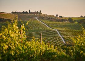Chianti, l'80 per cento dei vacanzieri proviene dalle regioni del centro e del nord Italia