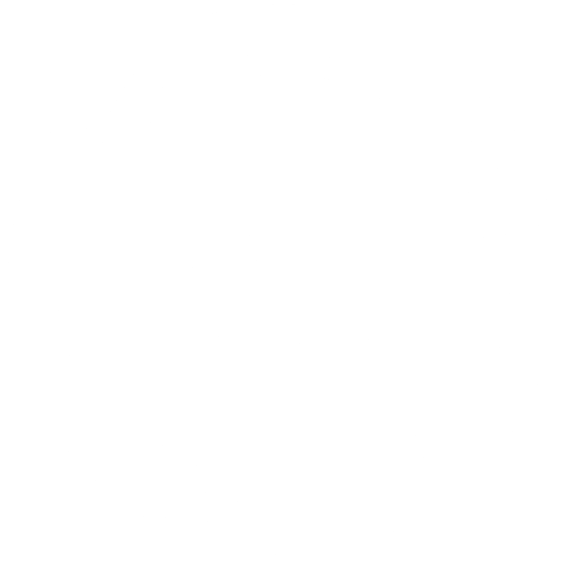 XII Waves Academy