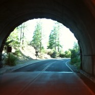 5. Day 25:  Tiredness Is A Tunnel To The Truth