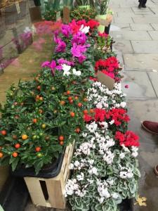Flowers on the Kensington High Street