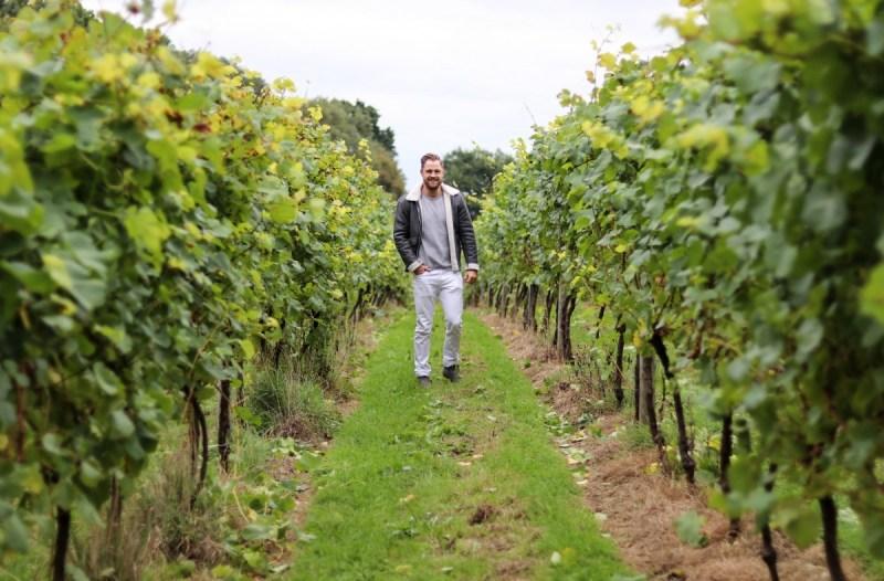 Bolney Wine Estate   Best of British